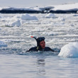 Diver near the ice — Foto de Stock