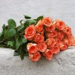 Roses of orange colour — Stock Photo