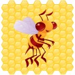 Royalty-Free Stock Imagem Vetorial: Honey Bee