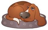 Sleepy Hound Dog — Stock Vector