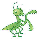 Praying Mantis Cartoon Character — Stock Vector