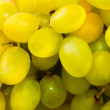Green grape — Stock Photo #1467121