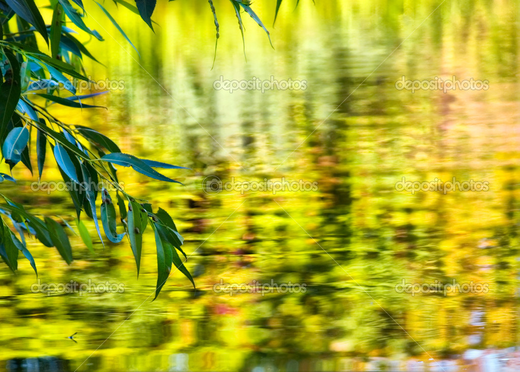 Green leaf over water yellow zeokalnaya surface to promote water lake pond river landscape nature air positive happiness lives — Stock Photo #1491871