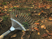 Rake in the orchard — Stock Photo