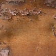 Rust texture — Stock Photo #2322189