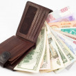 Different money with wallet — Stock Photo #1486166