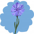 Cornflower — Stock Vector