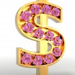 Golden dollar embellished — Stock Photo