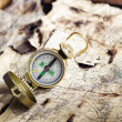Old Compass — Foto Stock #1492563