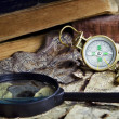 Old Compass — Foto de stock #1492574
