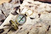 Antigua brújula — Foto de Stock