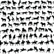 Royalty-Free Stock Vector Image: 100 horses