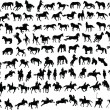100 horses - Stock Vector