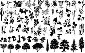 Vector silhouettes of herbs, trees, bushes, flowers, and mushrooms — Stock vektor