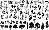 Vector silhouettes d'herbes, arbres, arbustes, fleurs et champignons — Vecteur