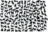 Hund silhuetter — Stockvektor