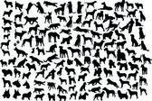 Siluetas de perro — Vector de stock