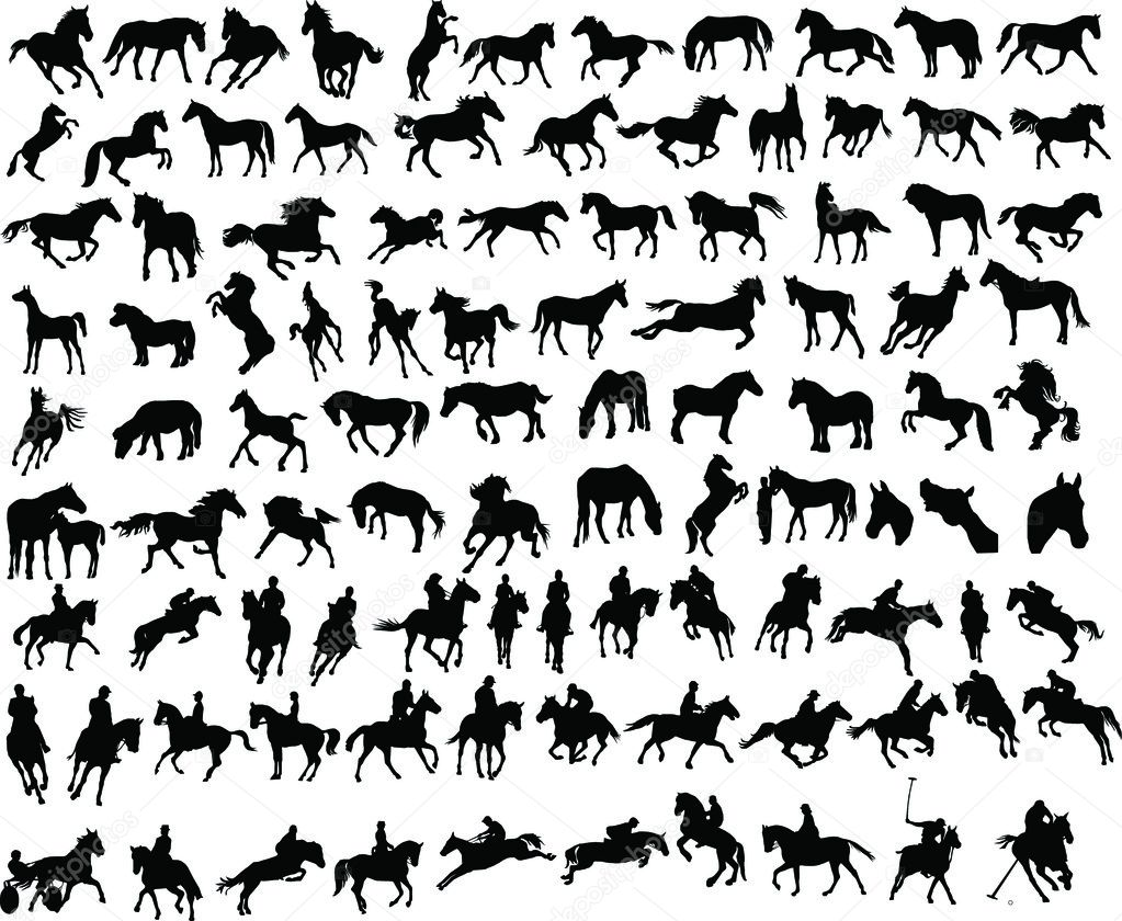 100 vector silhouettes of horses and riders — Stock Vector #1467487
