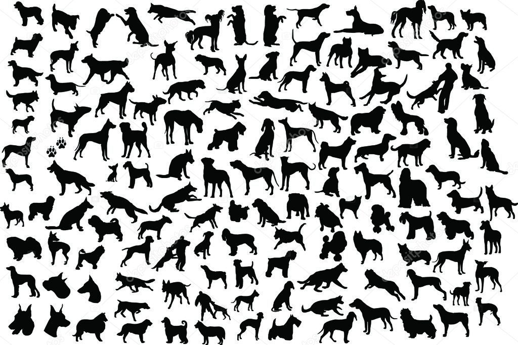 Lots of silhouettes of different breeds of dogs in action and static  Image vectorielle #1467565