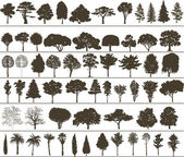Vector trees — Stockvektor