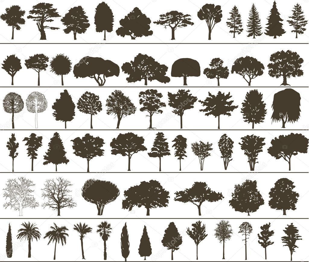 Set of black silhouettes of vector trees  — Stock Vector #1940037