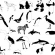 Stock Vector: Black-and-white animals