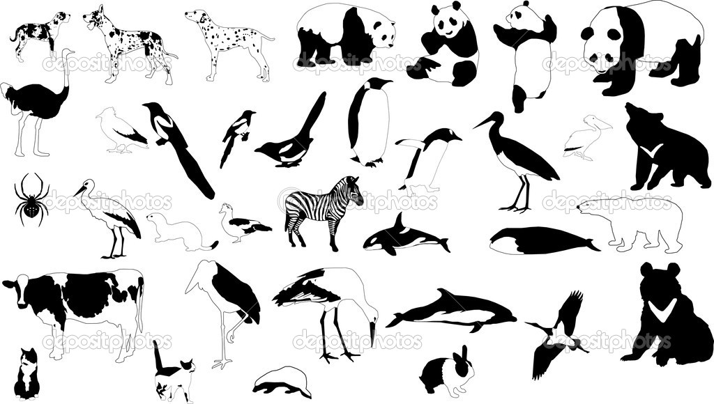 Collection of vector silhouettes of black-and-white animals — Stock Vector #2278618