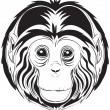 Royalty-Free Stock Vector Image: Monkey