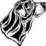 Rottweiler — Stock Vector #1852803