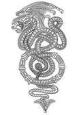 Snakes — Stock Vector