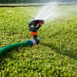 Water sprinkler — Stock Photo #1463608