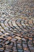 Wet paving stone — Stock Photo