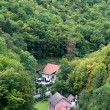 Village in the forest — Stockfoto