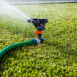 sprinkler — Stockfoto #1552546