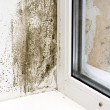 Stock Photo: Dampness