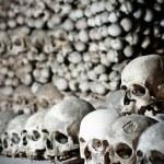 crânes humains — Photo #1684106