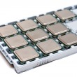 Processors on a substrate — Stock Photo