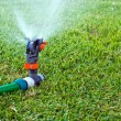 Stock Photo: Lawn sprinkler