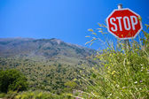 Stop invasion in the nature — Stock Photo
