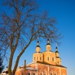 Church in Svensky monastery — Stock Photo
