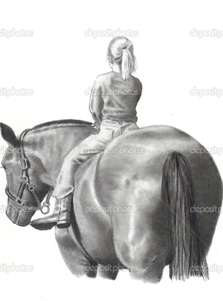 Horse Sitting Drawing Freehand Pencil Drawing of