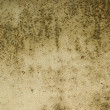 Grunge background texture — Stock Photo