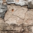 Cracked concrete background — Stock Photo