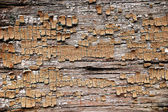 Cracked abstract grunge structure — Stock Photo
