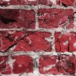 Grunge crack background — Stock Photo