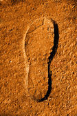 Fresh footprint — Stock Photo