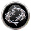 Button with the zodiacal sign Pisces — Stock Photo