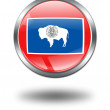 3D Wyoming Flag button illustration on — Stock Photo