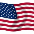 Bandera Estados Unidos — Stock Photo