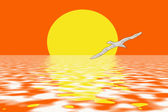 Beach and seagulls in sunset colors — Photo